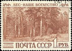 Forest - our wealth (from the painting by I. I. Shishkin)